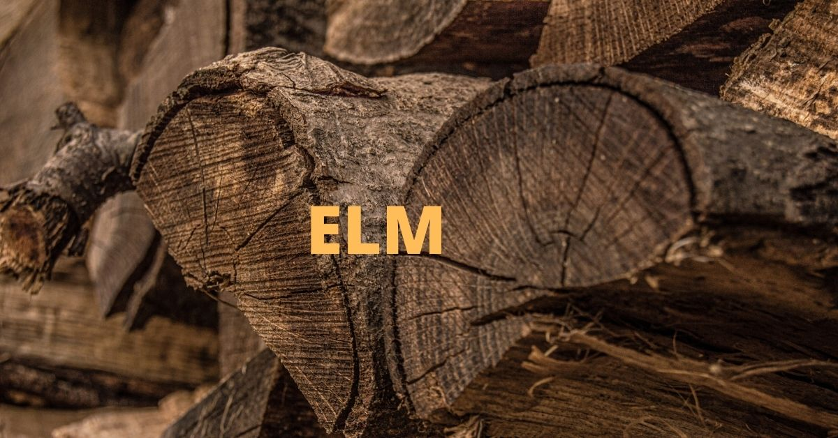 is elm good firewood