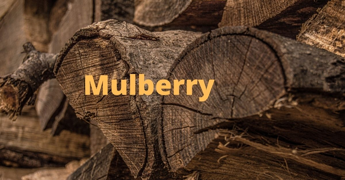is mulberry good firewood