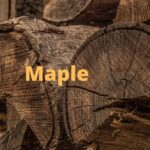 is maple good firewood